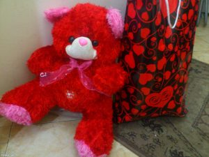 The red teddy bear, best Egyption's gift