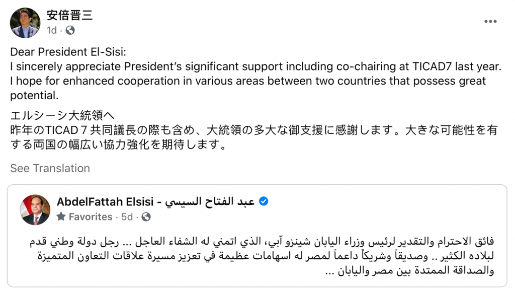 Japan's Abe Expresses Gratitude to Sisi's Wishes